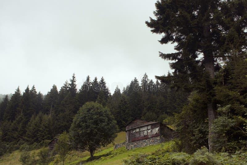 Vista de casas tradicionais, de madeira fotos de stock