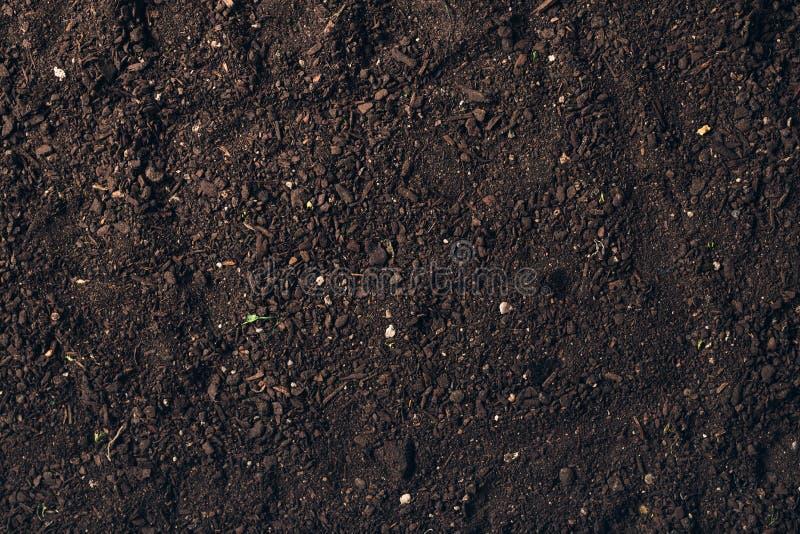 Vista de cima da mistura de composto de humor de Botânica fotos de stock