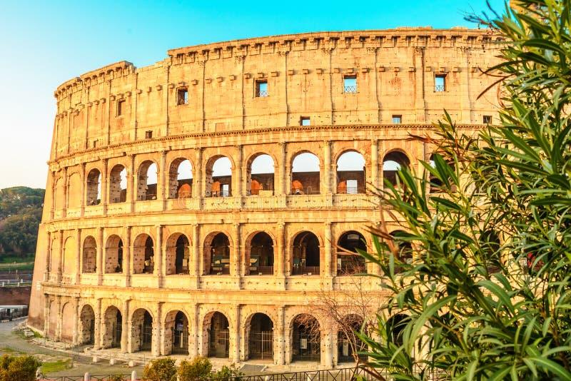 Vista de Colosseum en Roma, Italia en la salida del sol imagen de archivo