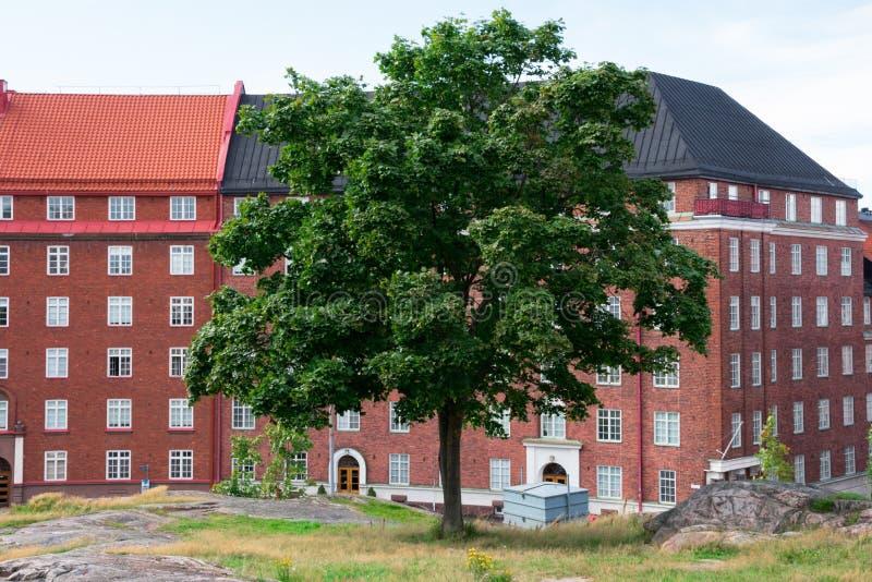 Vista de construções de Helsínquia e de uma árvore tomada do telhado da igreja de Temppeliaukio fotos de stock