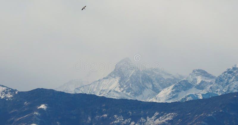 Vista de cumes italianos no Vale de Aosta, Itália foto de stock
