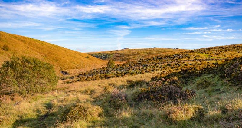Vista de Dartmoor de la trayectoria a la madera de Wistmans foto de archivo libre de regalías