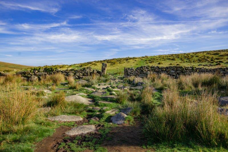 Vista de Dartmoor de la trayectoria a la madera de Wistmans imagenes de archivo