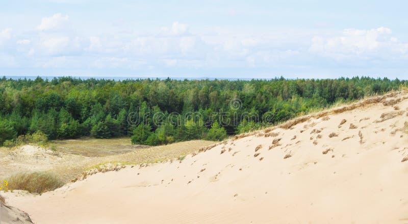 Vista de dunas inoperantes, Nida, Klaipeda, Lituânia imagem de stock