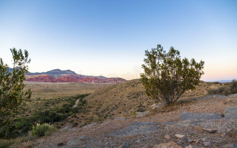 Vista de formações e de flora de rocha na área de recreação nacional da garganta vermelha da rocha imagem de stock