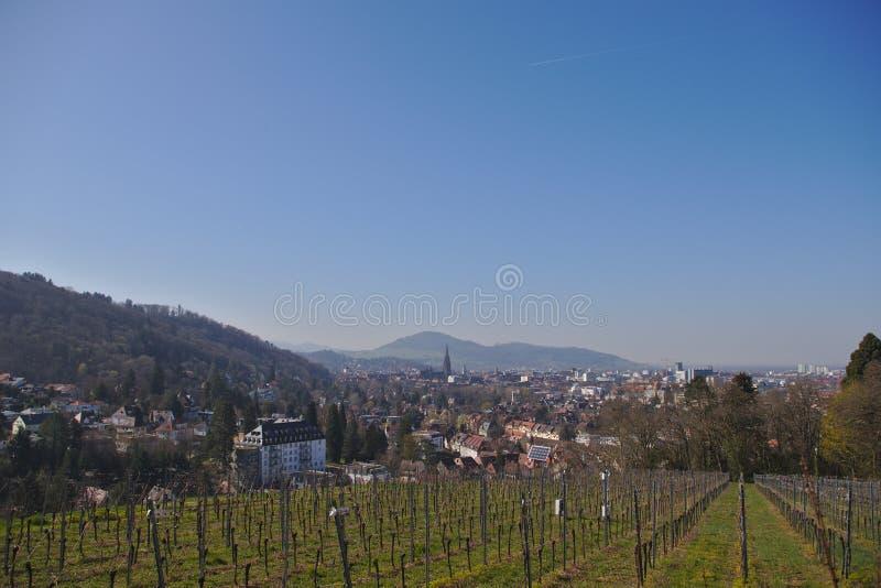 Vista de Freiburg-im-Breisgau de un viñedo fotos de archivo libres de regalías