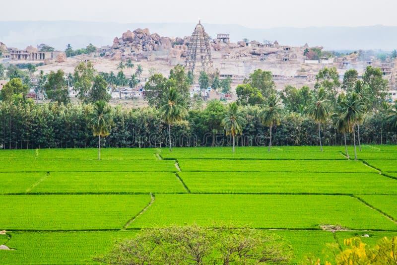 A vista de Hampi com arroz coloca, Índia imagens de stock