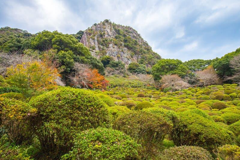 Vista de jardins de Mifuneyama na saga, Japão imagem de stock royalty free