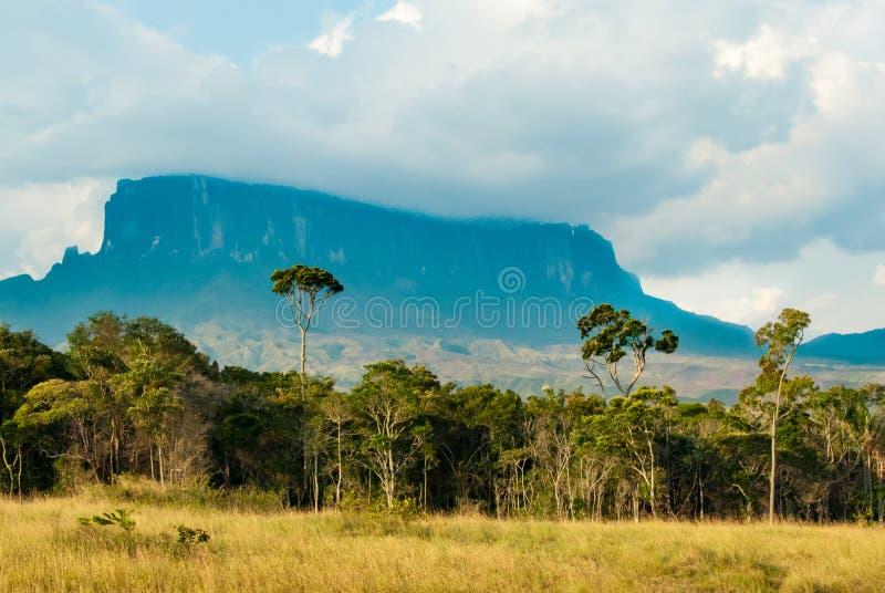 Vista de Kukenan Tepui, Gran Sabana, Venezuela imagen de archivo