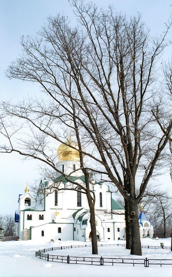 Vista de la catedral de Theodor imagen de archivo libre de regalías