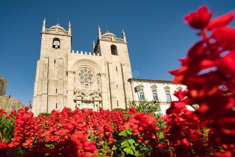 Vista de la Catedral de Oporto vista a través de las flores imagenes de archivo