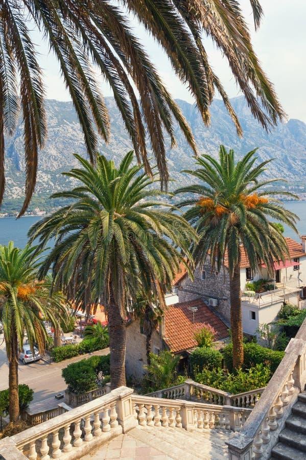 Vista de la ciudad de Prcanj de la playa de las escaleras de la iglesia del nacimiento de nuestra señora Bahía de Kotor, Monteneg imagen de archivo