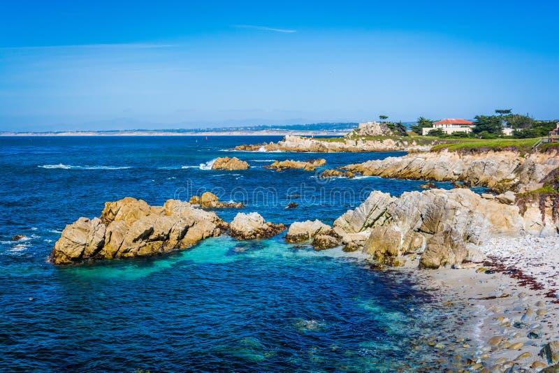 Vista de la costa costa rocosa en la arboleda pacífica, California fotos de archivo libres de regalías
