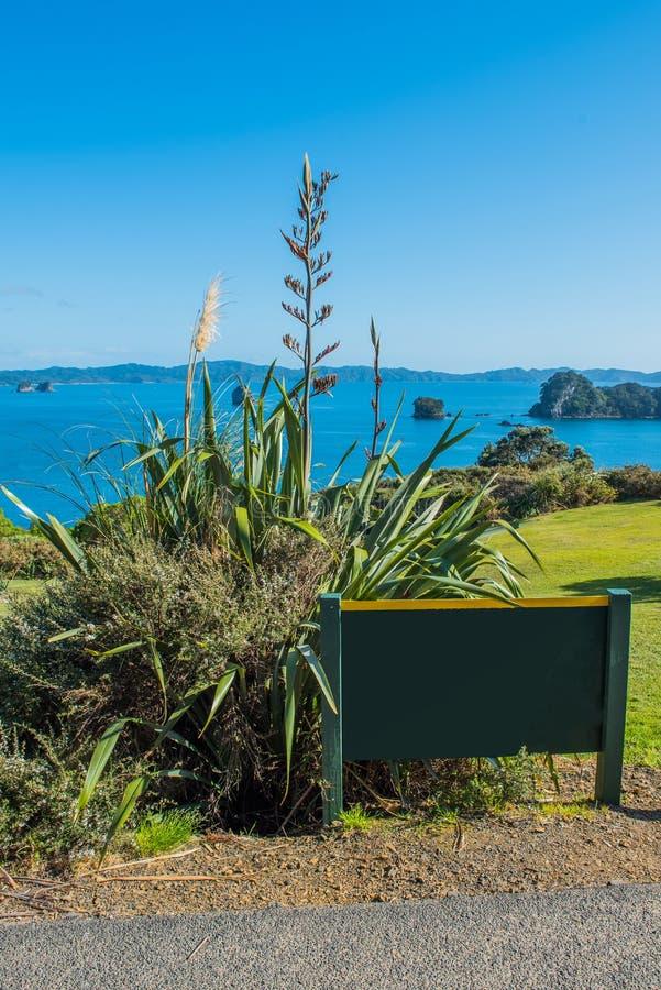 Vista de la costa costa, península de Coromandel, isla del norte, Nueva Zelanda Copie el espacio para el texto vertical imagen de archivo libre de regalías