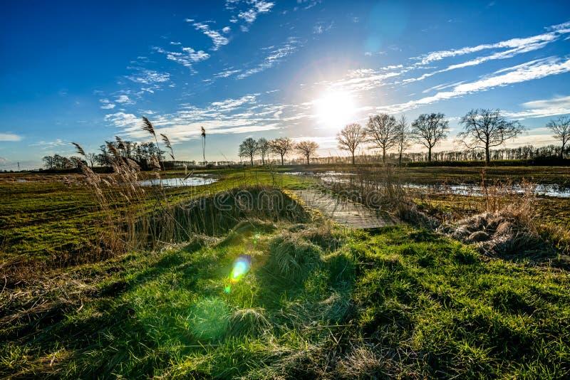 Vista de la isla anterior de Schokland en el Noordoostpolder holandés imagen de archivo