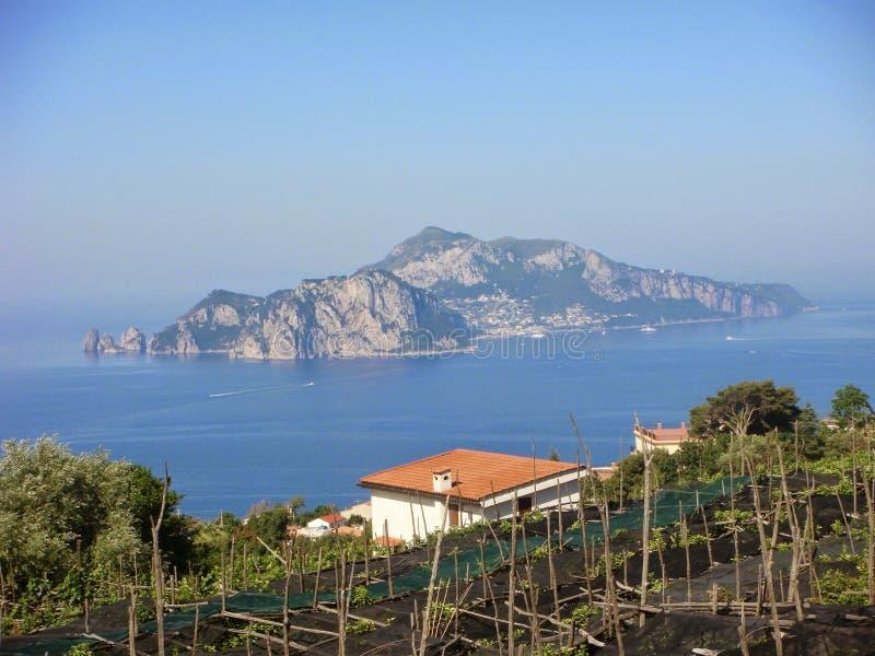 Vista de la isla de Capri en el medio del mar con en los viñedos del primero plano Costa de Amalfi al sur de Italia fotos de archivo