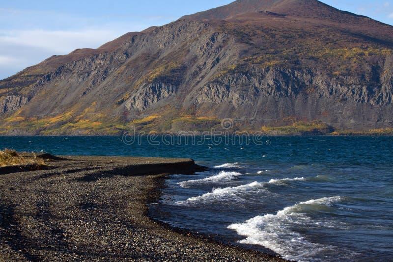 Vista de la línea de la playa del lago Kluane imagenes de archivo