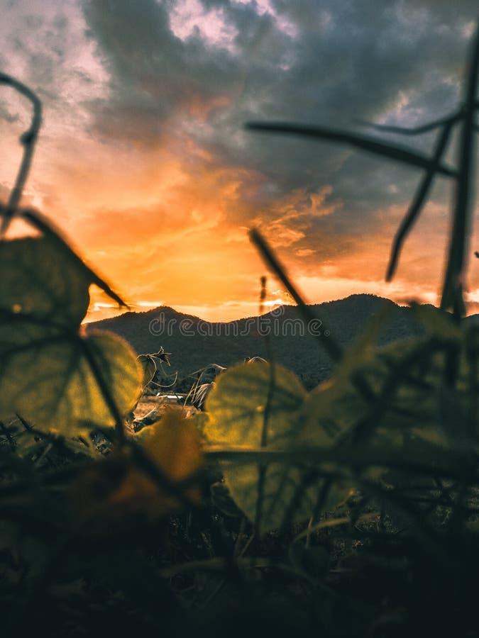 Vista de la montaña durante puesta del sol foto de archivo