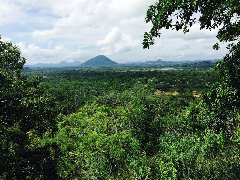 Vista de la naturaleza hermosa verde en el dambulla de Sri Lanka fotos de archivo