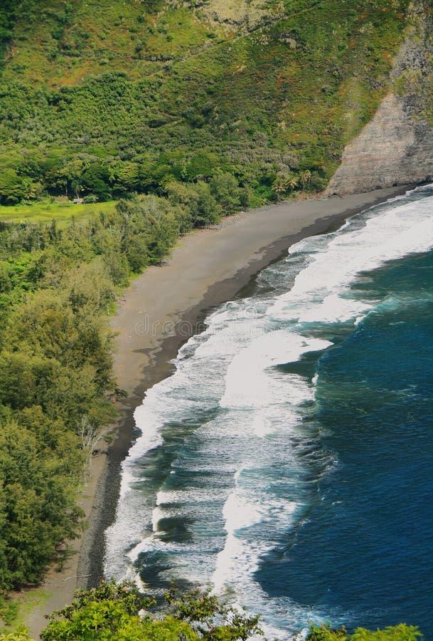 Vista de la playa en el valle de Waipio fotos de archivo