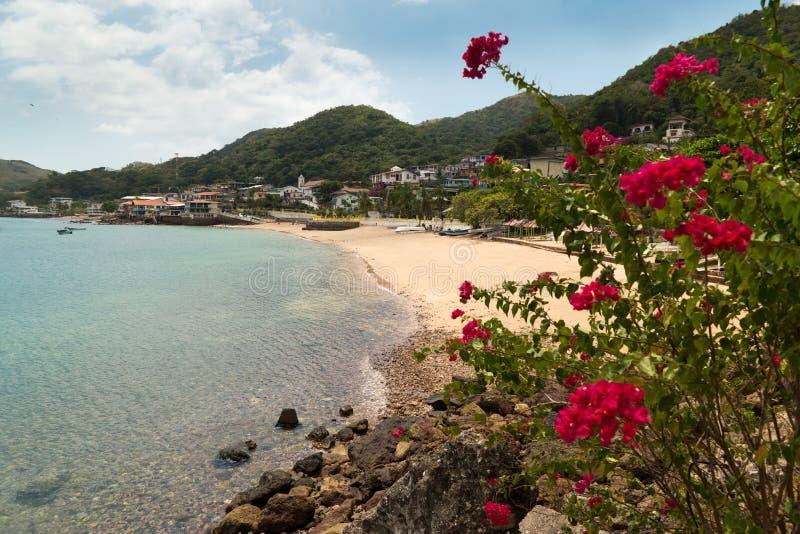 Vista de la playa y de flores de Isla Taboga Panama City imágenes de archivo libres de regalías