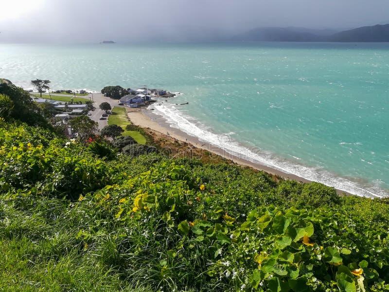 Vista de la playa y del océano en Wellington, Nueva Zelanda imagen de archivo libre de regalías