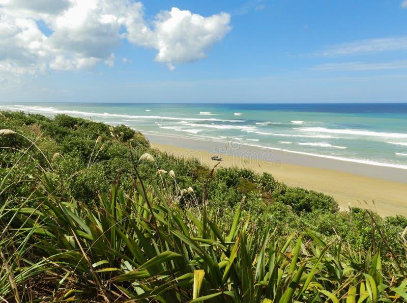 Vista de la playa y de su vegetación, Nueva Zelanda de Ripiro imagen de archivo libre de regalías