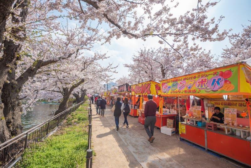 Vista de la plena floración de la flor de cerezo en el parque de Garyu, Nagano fotos de archivo