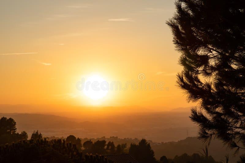 Vista de la puesta del sol con las siluetas del árbol y el cielo anaranjado imagen de archivo