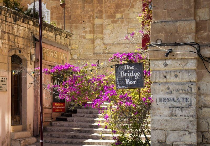 Vista de la señalización de una barra, de flores y de escaleras fotografía de archivo
