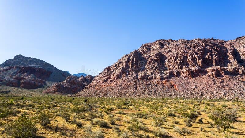Vista de las formaciones y de la flora de roca en zona de recreo nacional del barranco rojo de la roca fotos de archivo libres de regalías