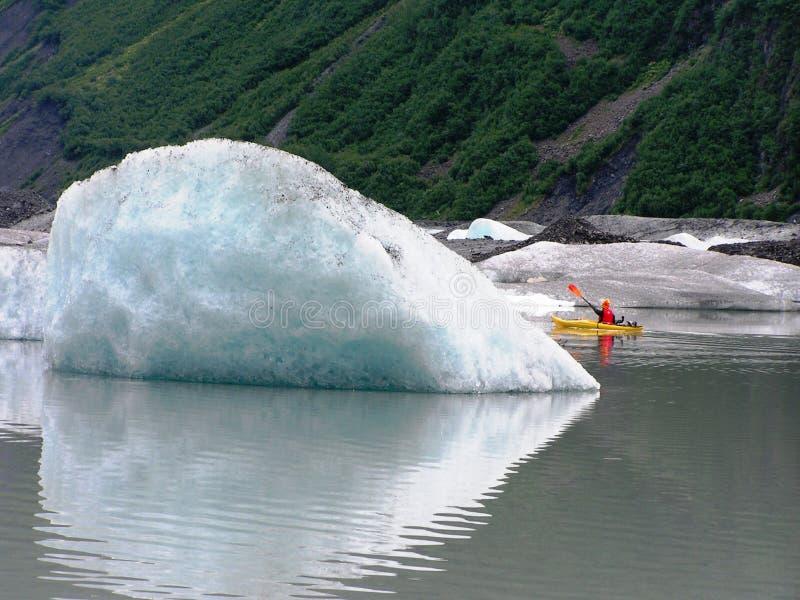 Vista de las hojas y de los glaciares de hielo de Alaska foto de archivo libre de regalías