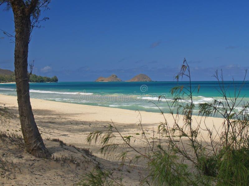 Vista de las islas de Lanikai de la playa Hawaii de los bramidos fotos de archivo libres de regalías