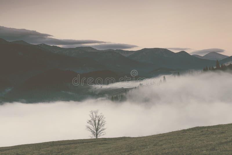 Vista de las montañas brumosas en otoño, Cárpatos, Ucrania de la niebla imagenes de archivo