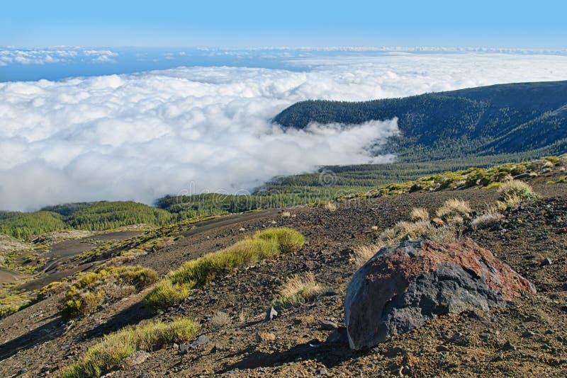 Vista de las nubes gruesas que cubren el bosque de la montaña fotografía de archivo libre de regalías