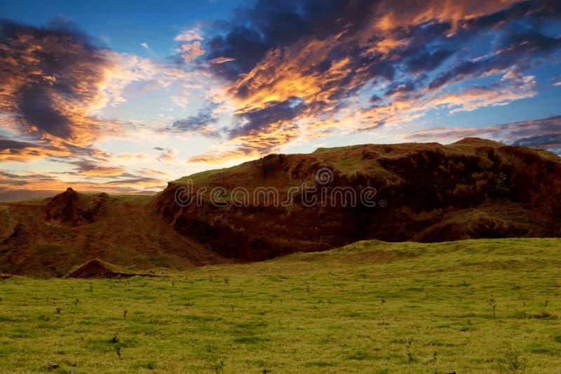 Vista de las tierras de labrantío verdes enormes en la salida del sol foto de archivo libre de regalías