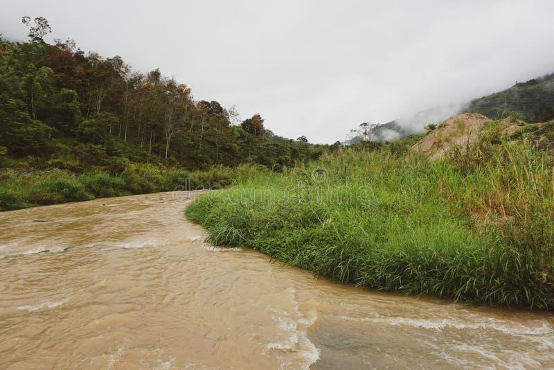Vista de los picos de la selva y de montaña y del pequeño río en selva tropical de Malasia con el cielo tempestuoso nublado Veget imagen de archivo