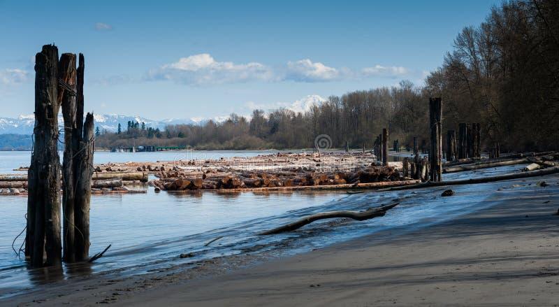 Vista de los registros a lo largo de Fraser River, Columbia Británica foto de archivo libre de regalías