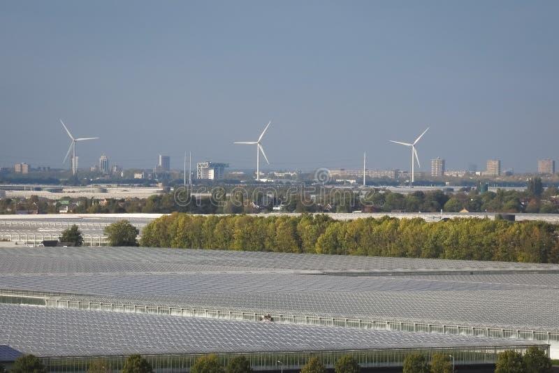 Vista de molinoes de viento y de invernaderos en la parte occidental de los Países Bajos, cerca de Rotterdam y de La Haya imagenes de archivo