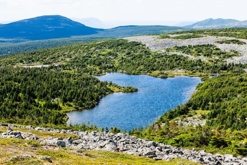 Vista de Mont Jacques-Cartier foto de stock