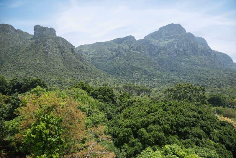 Vista de montañas de Kirstenbosch fotografía de archivo