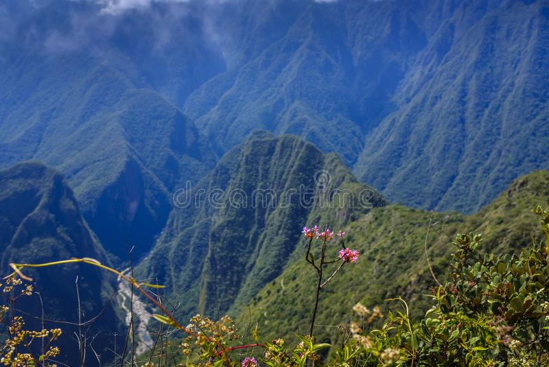 Vista de Montana Picchu foto de stock royalty free