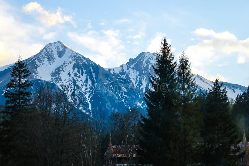 Vista de montanhas altas de Tatras da floresta Tatras alto, Eslováquia fotografia de stock