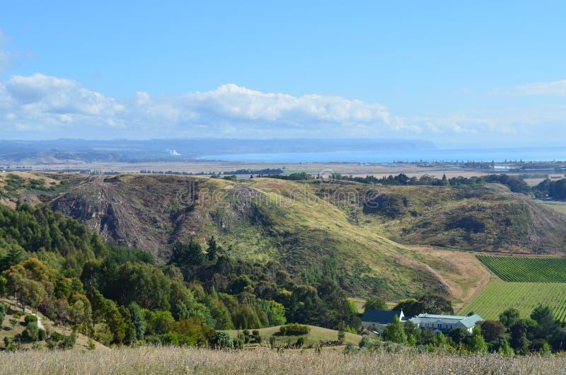 Vista de Napier, NZ de Sugar Loaf Reserve fotografia de stock royalty free