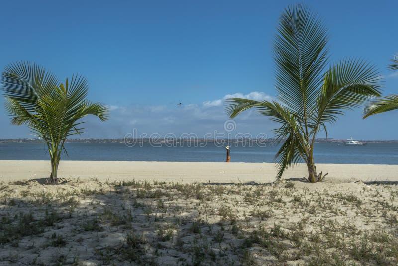 Vista de palmeras en la playa, y los barcos en el agua, en la isla de Mussulo, Luanda, Angola foto de archivo libre de regalías
