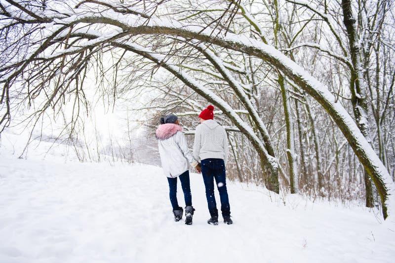 Vista de pares en amor de la parte posterior en invierno al aire libre fotos de archivo