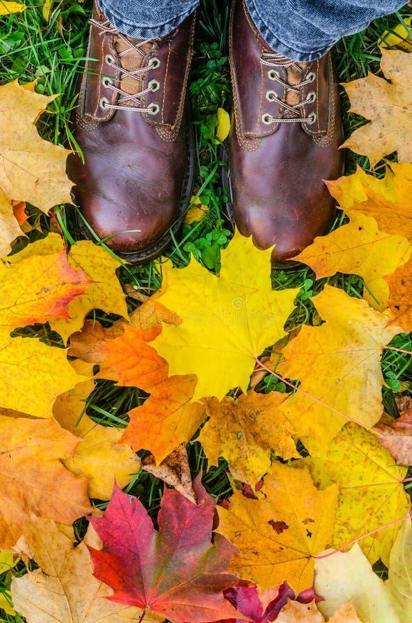 Vista de primeira pessoa nos pés nas botas de couro entre as folhas caídas foto de stock
