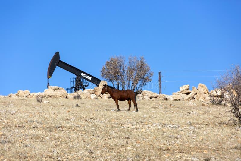 Vista de Pumpjack Horsehead na indústria petroleira da luz do dia fotografia de stock royalty free