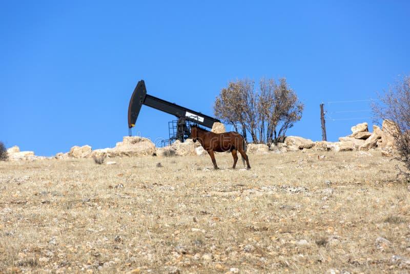 Vista de Pumpjack Horsehead na ind?stria petroleira da luz do dia fotos de stock royalty free