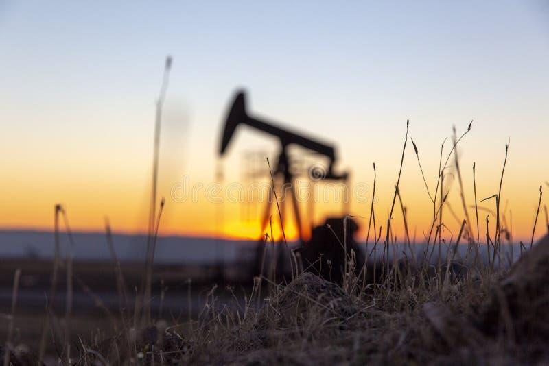 Vista de Pumpjack no por do sol da área do petróleo foto de stock royalty free